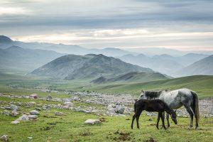 Bokonbaevo, Kyrgyzstan