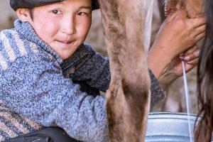 Suusamyr, Kyrgyzstan