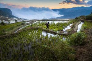 Duoyishu, Yunnan, China